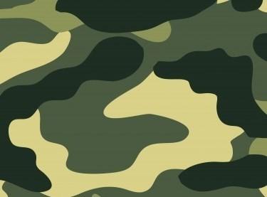 Хаки (Военный)